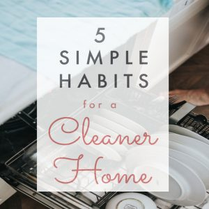 habits for clean house, ways to have clean house